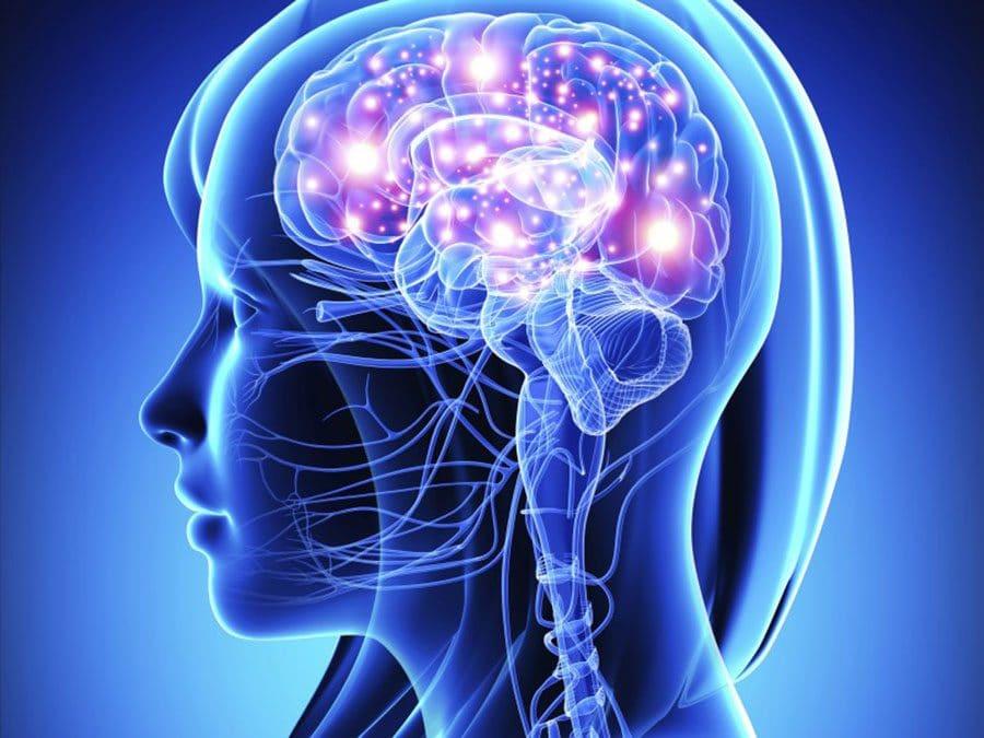 Phát hiện khoa học mới về tầm quan trọng của Vitamin E tự nhiên đối với sự phát triển não bộ của trẻ